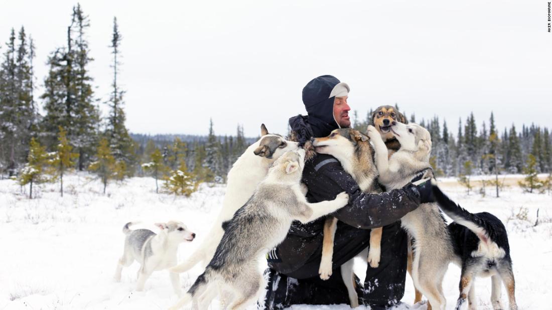 iditarod dog sled race alaska epic snow_00025113