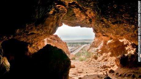 Animal DNA membantu membuka beberapa rahasia Gulungan Laut Mati
