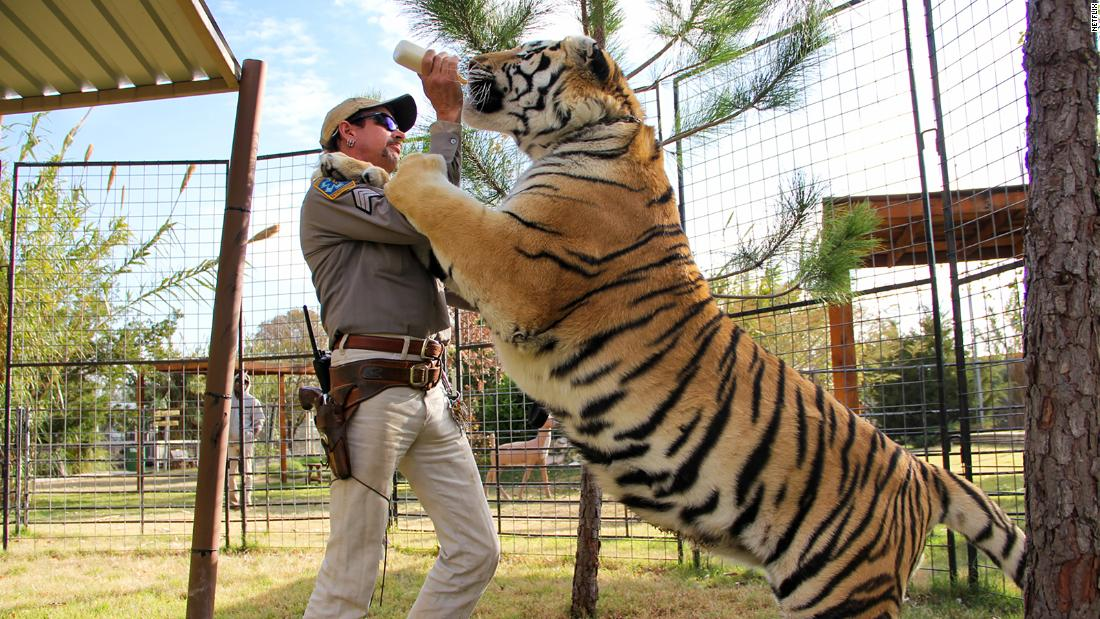 'Tiger King' is the weird docu-series we can't stop watching