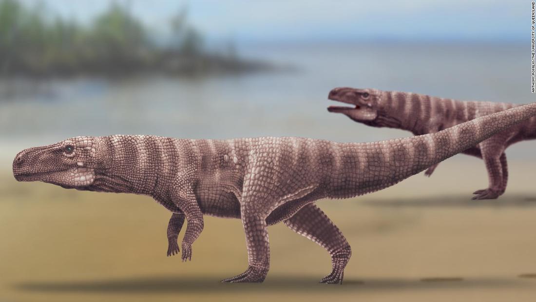 Jejak kaki mengungkapkan buaya prasejarah yang berjalan dengan dua kaki